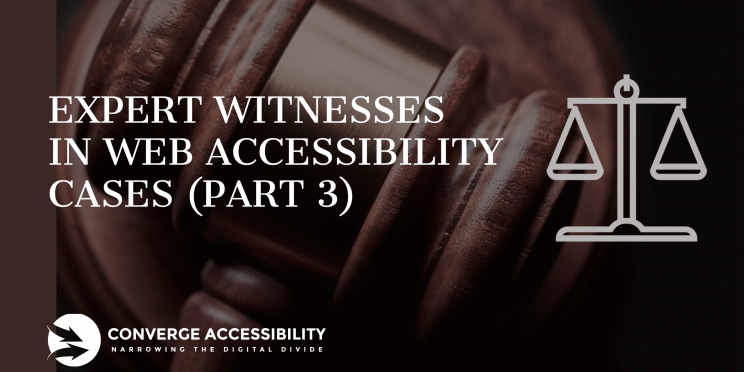 Expert Witnesses in Web Accessibility Cases (Part 3)