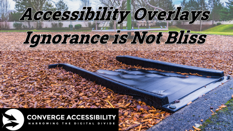 Accessibility Overlays - Ignorance is Not Bliss