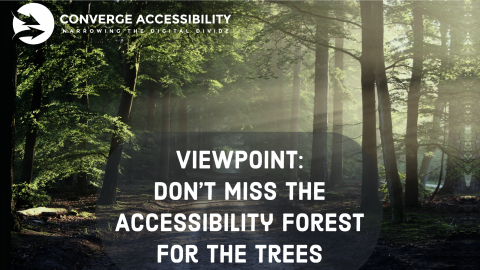 Viewpoint: Don't Miss the Accessibility Forest for The Trees