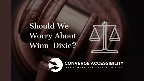 """Background Image with Text """"Should We Worry About Winn-Dixie?"""""""