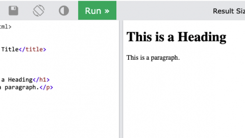 """Screen shot of W3 Schools """"Try it Yourself"""" page."""